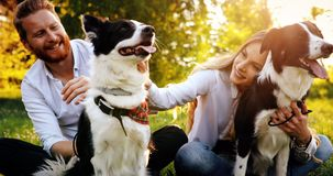 Beautiful couple cuddling and walking dogs outdoors stock photos