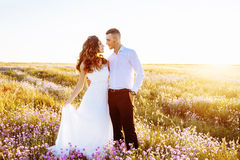 Beautiful couple in field, Lovers or newlywed posing on sunset with perfect sky Stock Photography