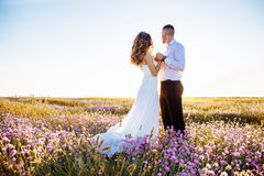 Beautiful couple in field, Lovers or newlywed posing on sunset with perfect sky Royalty Free Stock Photo