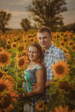 Beautiful couple having fun in sunflowers fields Stock Image