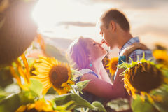 Beautiful couple having fun in sunflowers fields Royalty Free Stock Images