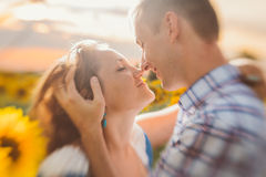 Beautiful couple having fun in sunflowers fields Stock Photo