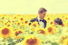 Beautiful couple having fun in sunflowers Royalty Free Stock Photo