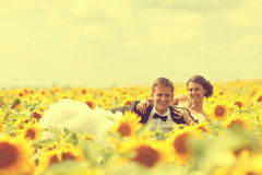 Beautiful couple having fun in sunflowers Royalty Free Stock Image