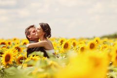 Beautiful couple having fun in sunflowers Stock Photography