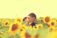 Beautiful couple having fun in sunflowers Stock Photo