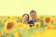 Beautiful couple having fun in sunflowers Stock Image