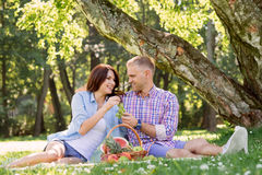 Beautiful couple having a lovely picnic in the summer park Stock Photo