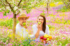 Beautiful couple having picnic Stock Images