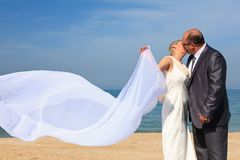 Beautiful couple kissing on the beach Stock Photography