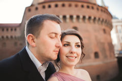 Beautiful couple, man, girl with long pink dress posing in old castle near columns. Krakow Vavel Stock Photo