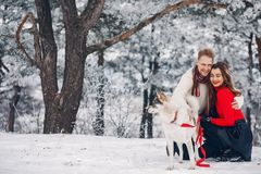 Beautiful couple playing with a dog stock photos