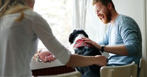 Beautiful couple relaxing at home and loving their dog Stock Image