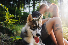 Beautiful couple resting in the forest Royalty Free Stock Photo