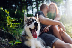 Beautiful couple resting in the forest Royalty Free Stock Photos