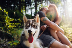 Beautiful couple resting in the forest Stock Images