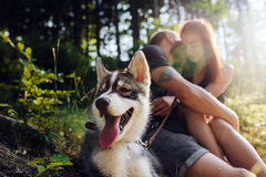 Beautiful couple resting in the forest Stock Image