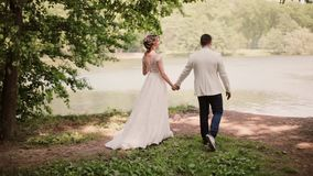 Beautiful couple share wedding day. They walk in park near river holding hands. Bride and handsome groom. Steadicam shot stock video