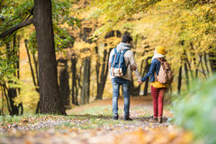 Beautiful couple on a walk in autumn forest Stock Image