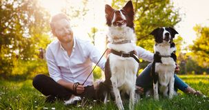 Beautiful couple walking dogs and bonding in nature royalty free stock image