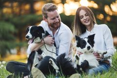Beautiful couple walking dogs and bonding in nature Stock Images