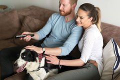 Beautiful couple watching television at home with their dog royalty free stock images