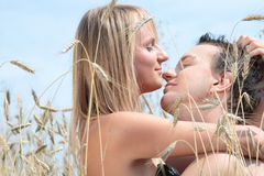 A beautiful couple in wheat field Royalty Free Stock Image
