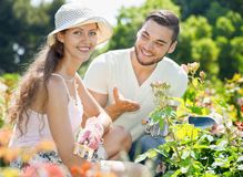 Beautiful couple working in gardens Royalty Free Stock Image