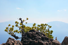 Beautiful Crater lake in Oregon, USA Stock Photo
