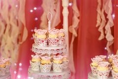 Beautiful creamy cake in white cups. Beautiful creamy cake in white lace cups royalty free stock images