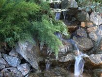 Beautiful creek flowing over the rocks. Small stream among stones and ferns with icicles Stock Photos