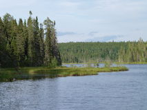 Beautiful creek and forest on a summer day near Wawa Ontario Canada Royalty Free Stock Images