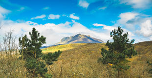 Beautiful Crimea mountain and forest sunny summer landscape. Royalty Free Stock Photo