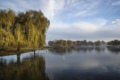 Beautiful crisp Autumn morning landscape over lake Royalty Free Stock Images