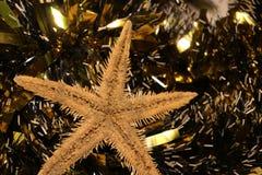 Beautiful Cristmas toys and sea star Stock Photos