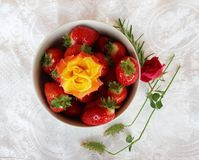 Beautiful cultivated deep red delicious strawberries, macro photography, decoration with fruit in white and rose flower. Beautiful cultivated deep red delicious stock images