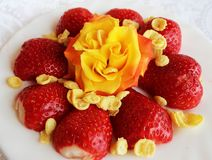 Beautiful cultivated deep red delicious strawberries, macro photography, decoration with fruit in white and rose flower. Beautiful cultivated deep red delicious stock photography