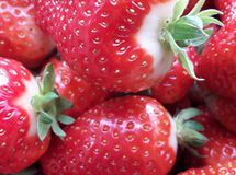 Beautiful cultivated deep red strawberries, macro photography, food and fruit. Delicious royalty free stock images