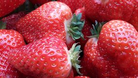 Beautiful cultivated deep red strawberries, macro photography, food and fruit. Delicious royalty free stock image