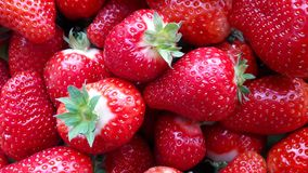 Beautiful cultivated deep red strawberries, macro photography, food and fruit. Delicious stock photography