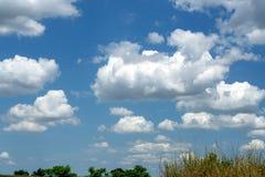 Beautiful cumulus clouds on bright blue sky.  stock photos
