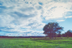 Beautiful cumulus clouds over meadows and fields in the valley Stock Photography