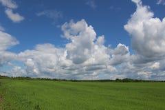 Beautiful cumulus clouds. Stock Image