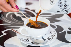 Beautiful cup of coffee Stock Images