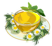 Beautiful cup of herbal tea Royalty Free Stock Photo