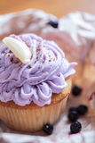 Beautiful cupcake with creamy topping Stock Images