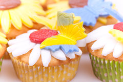 Beautiful cupcakes Stock Image