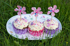 Beautiful cupcakes Royalty Free Stock Image