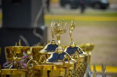 Beautiful cups are waiting for their winners. Awards for participants of the dog show. Macro. Soft focus.