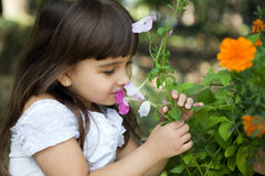Beautiful curious girl  in a garden Stock Photos